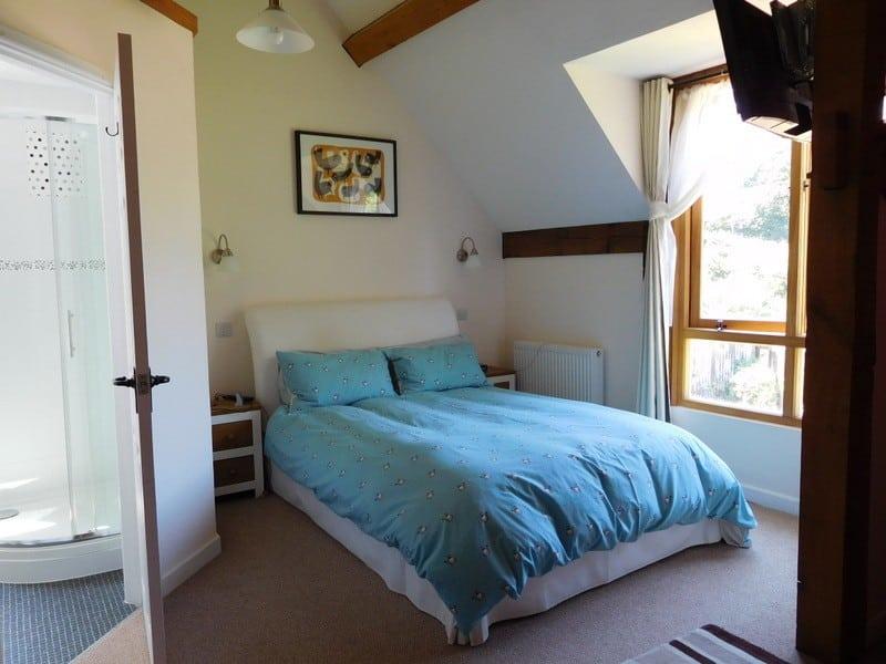 room 5 blue